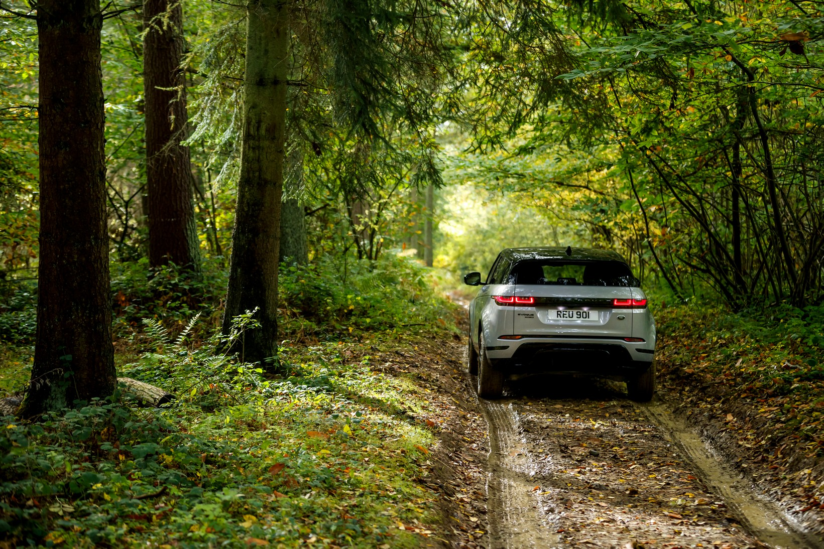 Land Rover Range Rover Evoque 2.0 D180 R-Dynamic SE 5dr Auto image 3