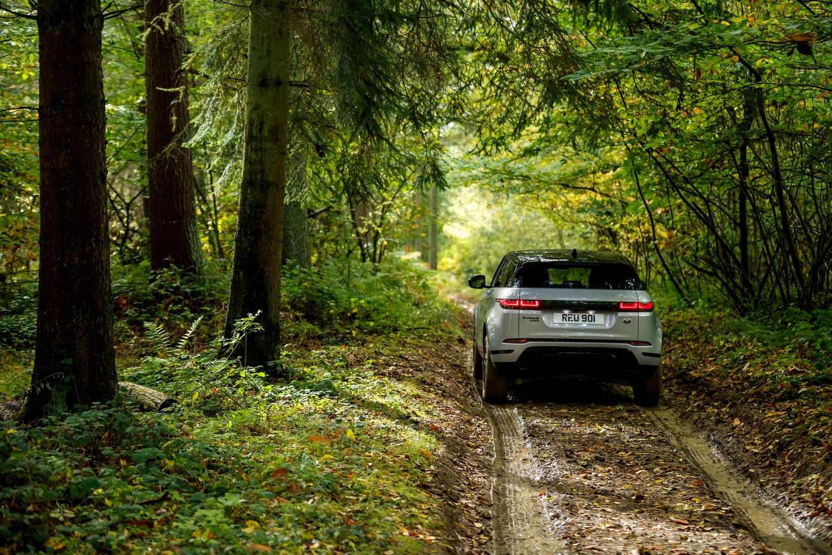 Land Rover Range Rover Evoque 2.0 D180 SE 5dr Auto image 3