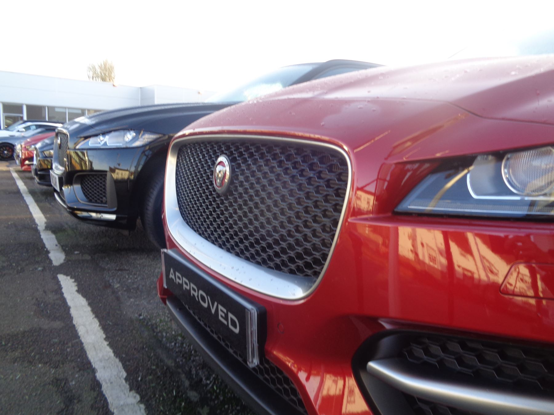 Jaguar  Choice of over 150 cars in group stock.