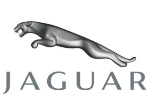 The Jaguar Quiz