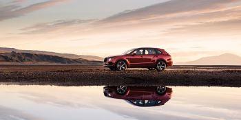 Bentley Bentayga V8 - Balancing exquisite refinement and performance image 4 thumbnail