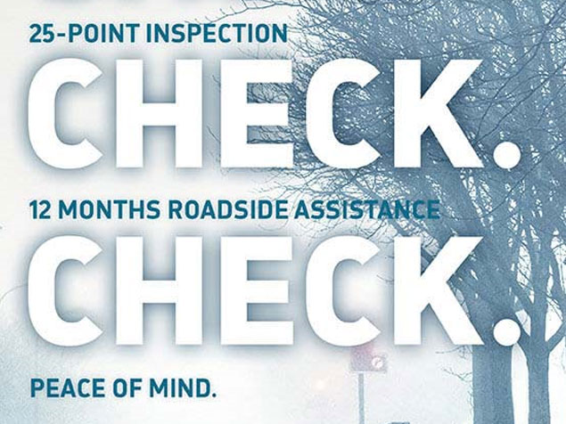 Vauxhall Winter Health Check